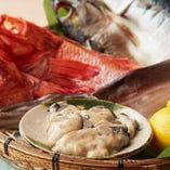 きんき、前沖鯖、烏賊に牡蠣まで、青森鮮魚の美味しさをぎゅっと凝縮