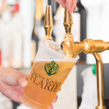 全コースに含まれている飲み放題は2種類の生ビールも楽しめます