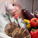 素材を厳選し味の良さを引き出す創作和食料理をご用意致します