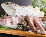 近海漁港から毎朝仕入れの新鮮魚介類【大阪府】