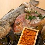 淡路島&沼島から届く新鮮魚介【淡路島】