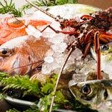 伊勢湾と黒潮の栄養豊富な海で美味しい【魚】を育つ【三重県】