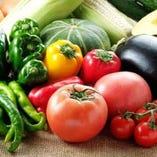 農家直送の野菜【北海道】
