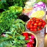 新鮮野菜を堪能するなら、前菜ビュッフェをどうぞ!季節野菜も登場します★