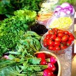 有機野菜の前菜ビュッフェ(食べ放題)