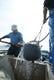 しらす漁風景  写真しらす屋前福提供