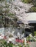 四季折々に季節の花や緑が皆様をお迎えします。