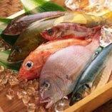 新鮮な魚介類【埼玉県】