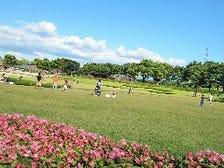 自然に囲まれた公園