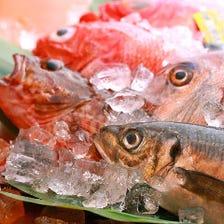旬鮮魚専門!活きの良さを堪能