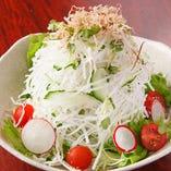 生野菜たっぷり大根サラダ