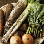栄養満点泥んこ野菜【栃木県/他近県】