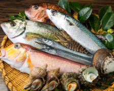 地元・茨城や全国各地の新鮮食材を。