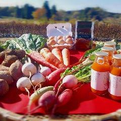 農薬不使用野菜のイタリアンバル BELLA BOCCA