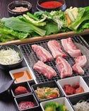 《大人気コース》 こだわりのお肉と野菜をお楽しみください