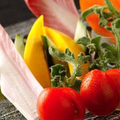 旬の生野菜 おまかせ盛り合わせ