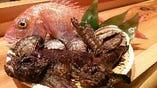 瀬戸内海の旬の鮮魚を厳選しております【愛媛県】