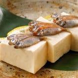 すくがらす豆腐