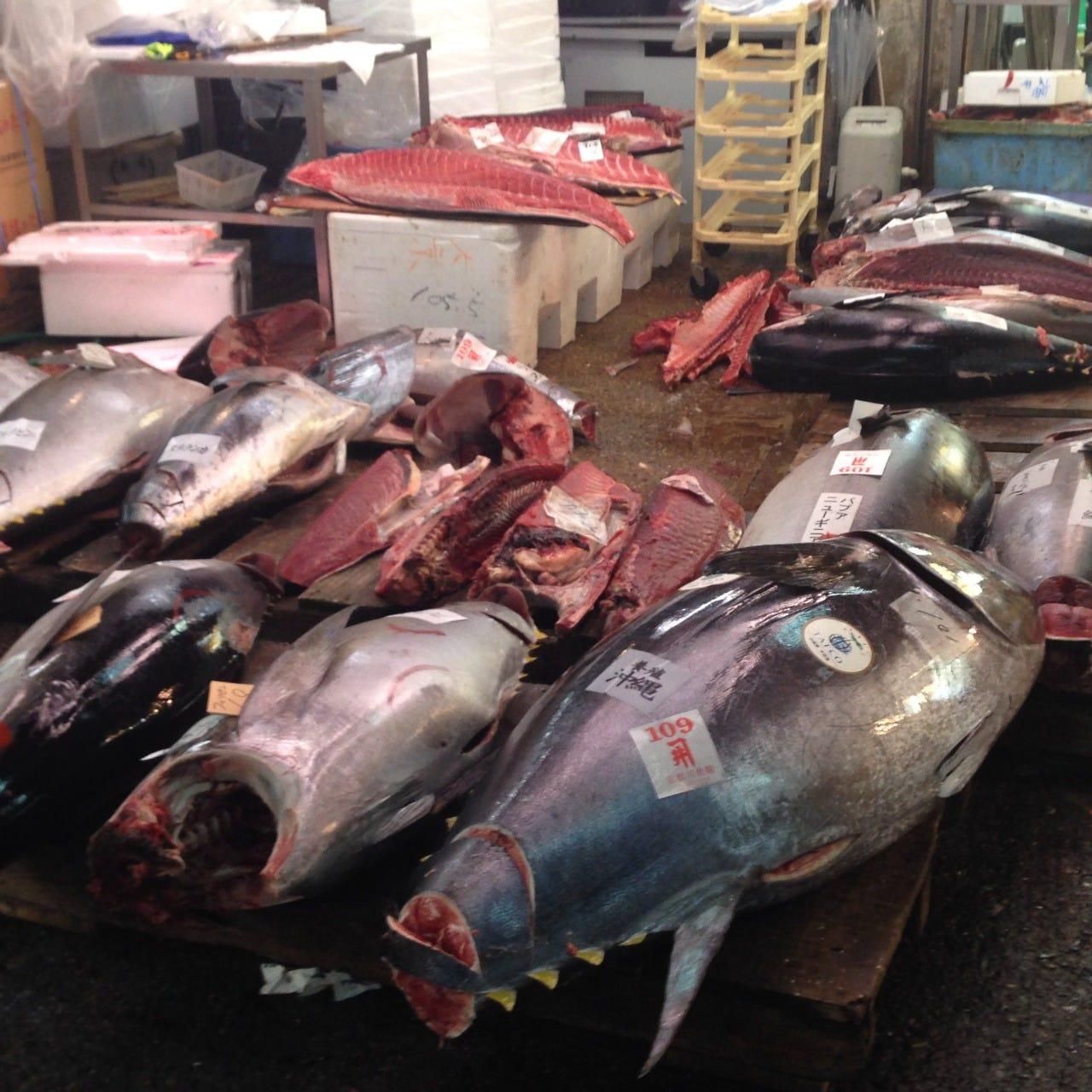 毎朝京都中央市場でその日のいいものを品定めしてます!