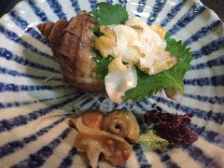 貝類いろいろ(写真は北海道産 つぶ貝)