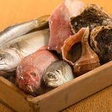 産地直新鮮魚介【北海道】