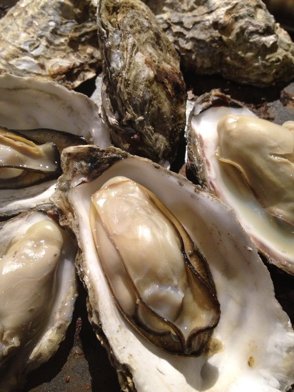 当店看板メニュー『蒸し牡蠣』 食べ応えも抜群です♪
