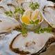 冬は真牡蠣!夏は岩牡蠣! 全国各地より選りすぐりの牡蠣を入荷