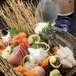 静岡県御前崎港で水揚げされた新鮮な旬魚をはじめ、全国から美味しいお魚を仕入れております。
