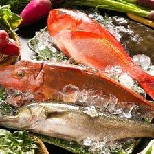 日本一豊かな、三浦の地魚
