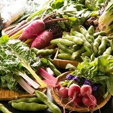 三浦の彩り野菜