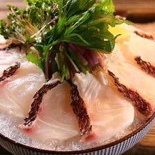 新鮮魚介で楽しむ湘南の恵み