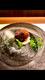 山口県産岸根栗の渋皮煮 モンブラン仕立て