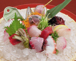 伊豆の新鮮魚介お刺身盛り込み
