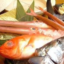 【2時間飲み放題】市場直送の新鮮なお魚や野菜の料理が楽しめる茶々丸コース ※日本酒焼酎飲み放題無し