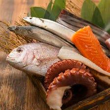 産地直送の魚が並ぶ魚が美味い居酒屋