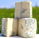 高秀牧場のチーズ【千葉県いすみ市】