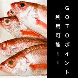 湘南で高級魚のどぐろを食べるならくぅで!