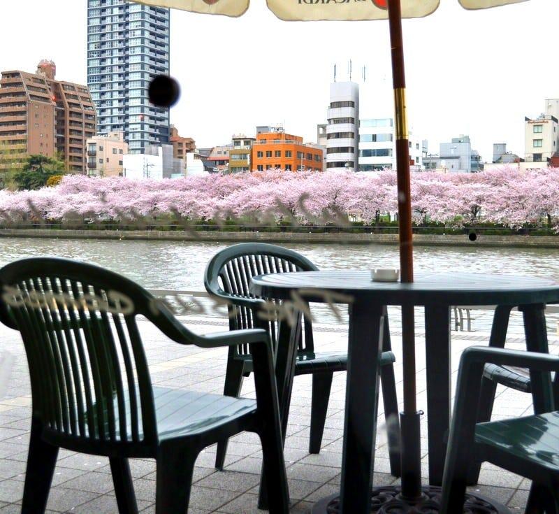Green Cafe 川の駅 はちけんや店