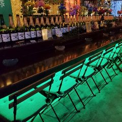 FOREST‐STYLE BAR Kirra+バンビーノ