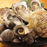 産地直送の貝類だから鮮度が違う!【宮城県】