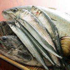 全国より選りすぐった獲れたての旬魚