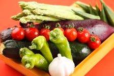 【厳選】季節の旬野菜