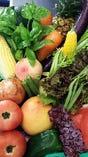 朝倉産を始め各地の旬の野菜