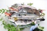 石川の海で育った鮮度抜群の魚。