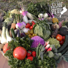 近江野菜100種類以上