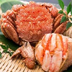 旬菜ダイニング 魚や藤海