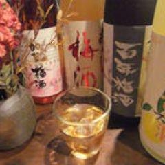 日替わりのおすすめ果実酒