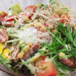 野菜たっぷりデジブルサラダ