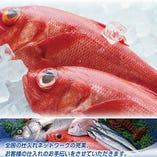 各地の厳選鮮魚をご提供させて頂いております。