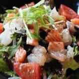さかまるの海鮮サラダ